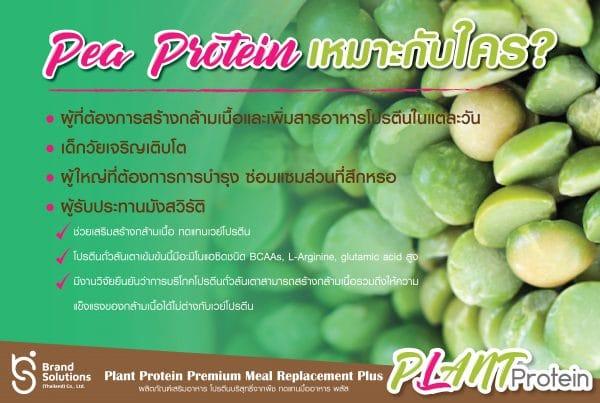 อาหารเสริมปรตีนจากถั่วลันเตา