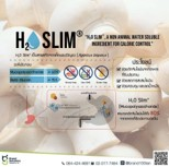 H2O Slim สารสกัดจากเห็ดแชมปิญอง